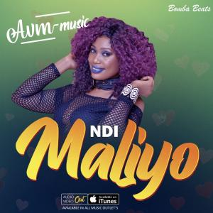 Ndi Maliyo