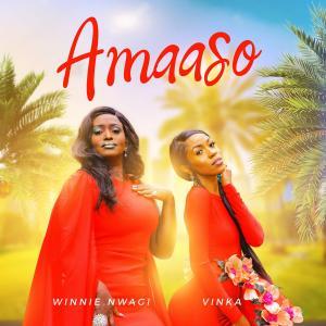 Amaaso
