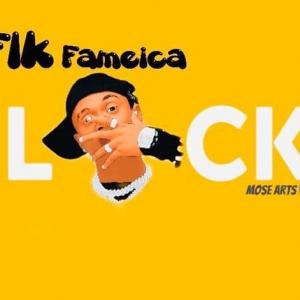 Fik Fameica