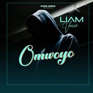 Omwoyo