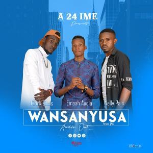Wansanyusa