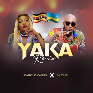 Yaka remix